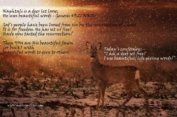 deer Naphtali beautifulwords