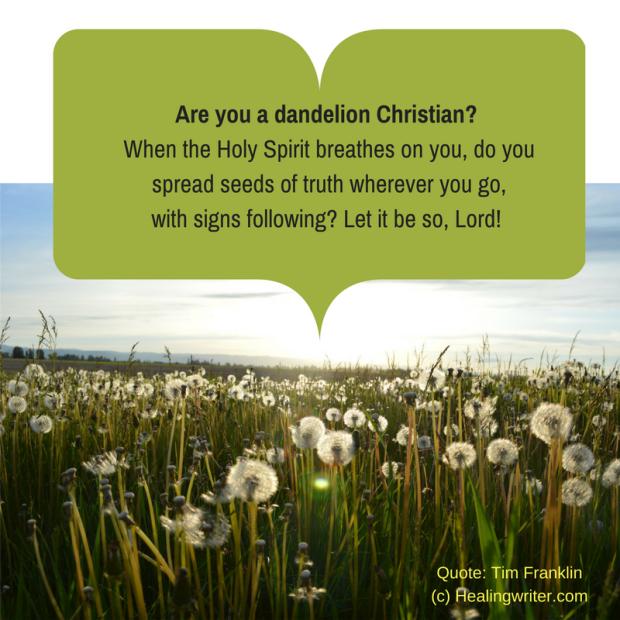 Dandelion Christian 033117