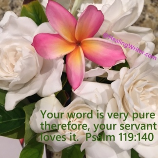 Gardenia Gods Word pure PS 119