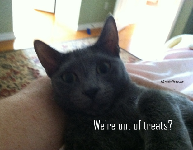 Caption Out of treats